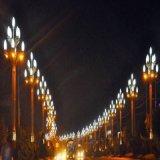 四川景觀燈,中晨景觀燈,道路景觀燈