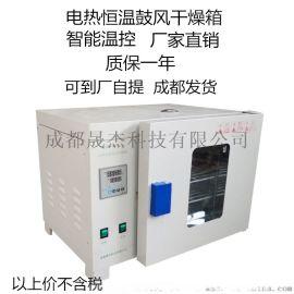 电热恒温鼓风干燥箱工业干燥箱
