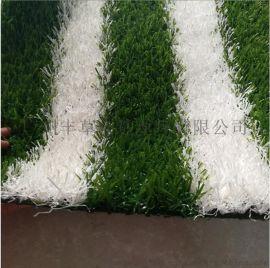 广州丰草篮球场专用人造草坪5公分白草
