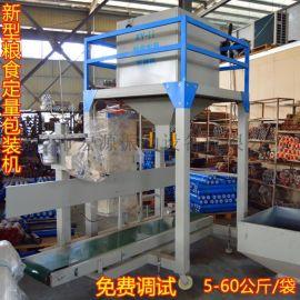BB肥包装秤 20-50kg定量打包机 颗粒物自动装袋机