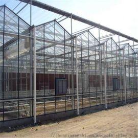 智能温室大棚建设 连栋智能温室 智能温室大棚工程