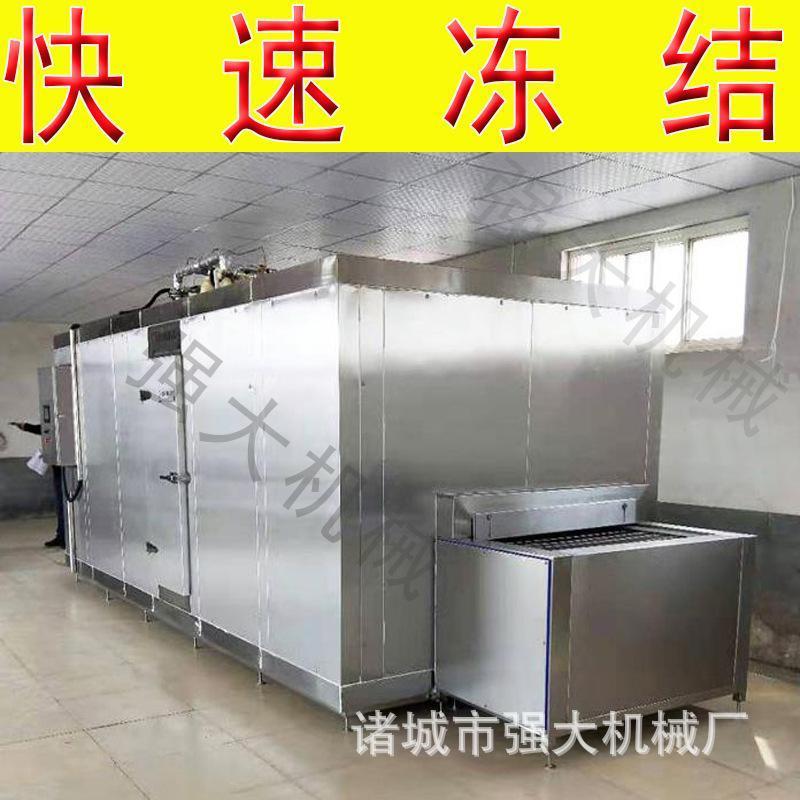 大型连续式螃蟹速冻机 基围虾对虾青虾速冻机