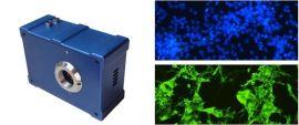 显微成像分析系统CCD摄像头