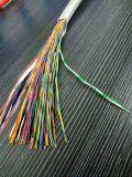 對絞銅線編織分遮罩聚氯乙烯計算機電纜DJYPV