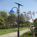 LED庭院燈供應100W 80W 60W 深圳耀悅生產廠家