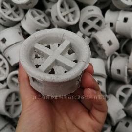 耐酸耐蚀腐耐高温陶瓷阶梯环填料