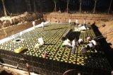 雨水收集PP模块 常州雨水收集系统厂家