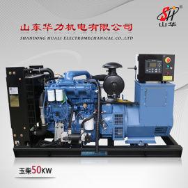 山东华力50KW小型发电机组