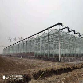青州厂家专业建设花卉温室玻璃温室工程