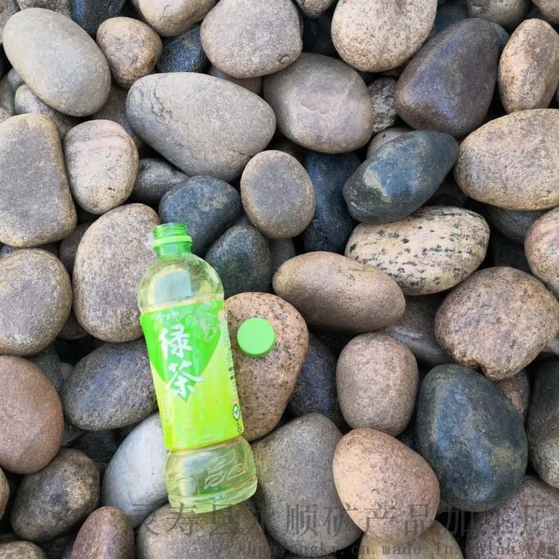 德州五彩鹅卵石   永顺河滩石供应