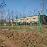 园林隔离护栏网/焊接钢丝护栏