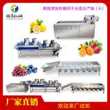 大型果蔬加工生產線(A)