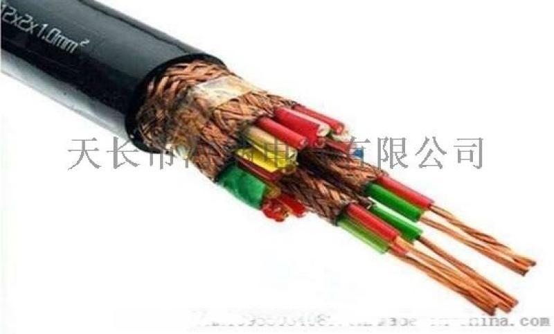 阻燃計算機電纜本安ZR-DJYPVP