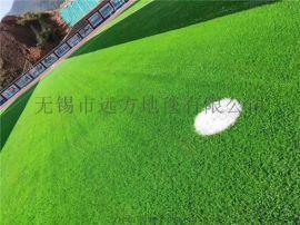 远方供应运动场地人造草坪