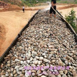 厂家供应鹅卵石 铺路园林景观鹅卵石  鹅卵石滤料