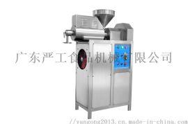 多功能米粉机 米粉米线年糕机 全自动米粉机生产线