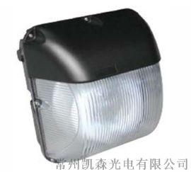 LED適用於花園、樓宇泛光、建築物景觀、過道走廊
