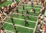 疯狂欧洲杯 真人版桌上足球挑战赛真人版桌上足球