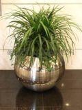 时尚不锈钢花盆 台阶面花插瓶 金属花器