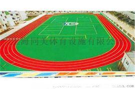 温州全塑型塑胶跑道门球场草坪铺装运动场铺设施工
