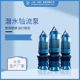 井筒式安装QZ潜水轴流泵生产厂家
