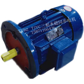 高速永磁同步電機TYBZ112M-2/4KW電機
