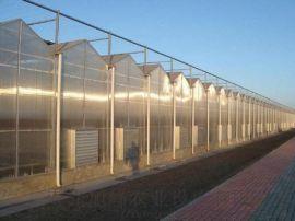 阳光板温室大棚 PC阳光板温室 阳光板大棚