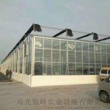 智能玻璃温室 智能温室建设 智能温室大棚