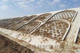 湖北六棱块护坡厂家批发零售保定铁锐质量保证