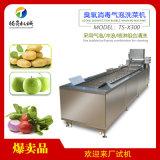 中央厨房清洗设备 叶菜类洗菜机 果蔬清洗机源头厂家