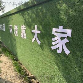 邵阳市  区围挡草坪供应 幼儿园人造草坪