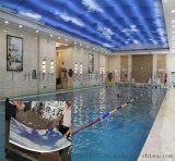 恆溫室內游泳館裝飾藍天白色鋁單板造型鋁單板