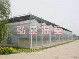 弘康温室 PC板连栋纹络型温室建设