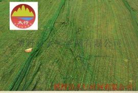 博野太行2.0黑色遮阳网 工地遮阳网绿化盖土网