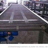 塑料鏈板輸送機
