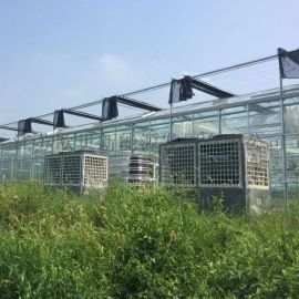 大型大棚空气能增温设备,智能化温室大棚控温机组