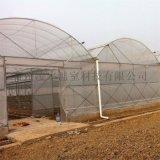 新型連棟溫室建設連棟玻璃溫室建造工程