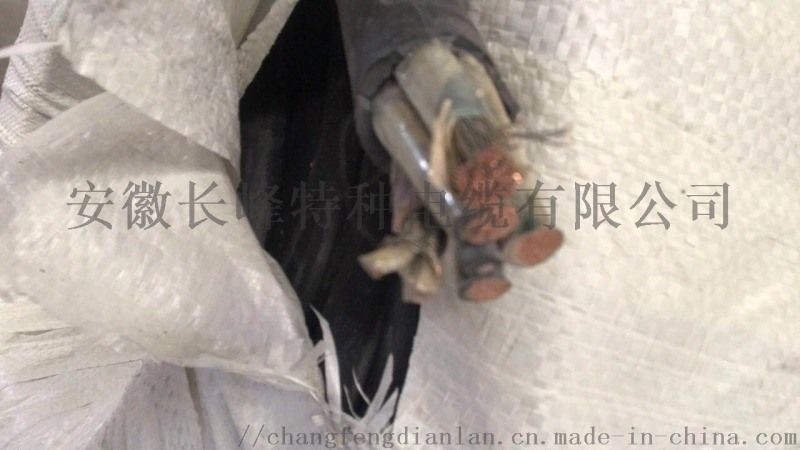 安徽长峰JHS/1*6特种电缆防水电缆专业生产