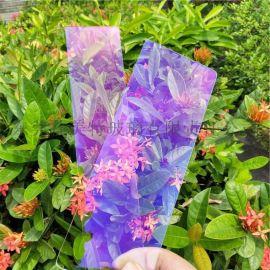 矩形AR玻璃  高透光灯具玻璃 深圳AR玻璃定制