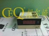 变频器专用表DP3-SK1C