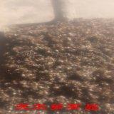 武漢乳化瀝青膨脹珍珠岩保溫隔熱材料