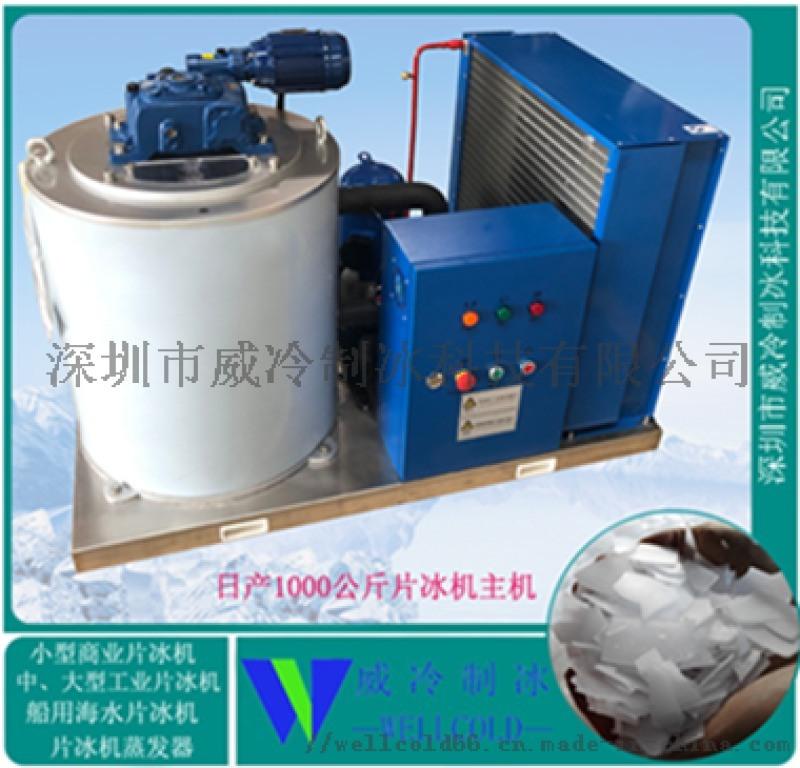 溫州酒店廚房設備配套日產1000公斤不鏽鋼冰片製冰機