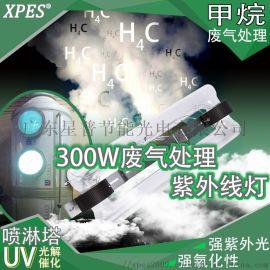 废气处理300W无极紫外线灯