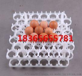 山东塑料蛋托 30枚塑料蛋托 多规格塑料蛋托