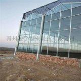 玻璃温室建设玻璃大棚工程并提供温室资材