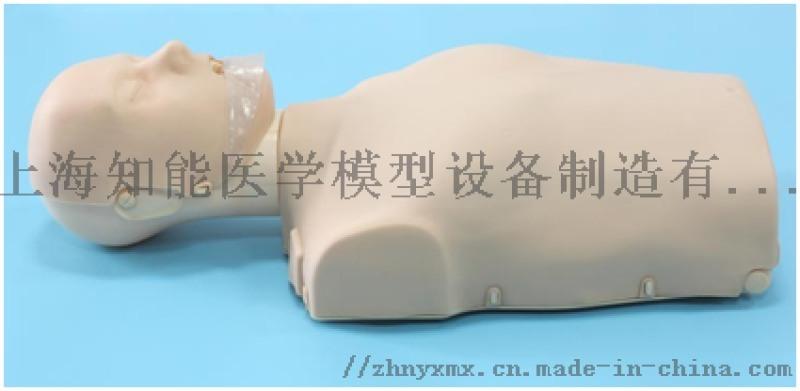 BIX/CPR100A简易电子版半身心肺复苏模拟人
