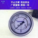瑞典進口REHOBOT壓力錶超高壓手動泵壓力錶