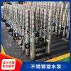 耐腐蝕精鑄全不鏽鋼潛水泵廠家直銷