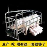 母豬定位欄  限位欄   现货供应