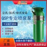 现货供应QSP喷泉泵 可立式卧式斜式潜水泵